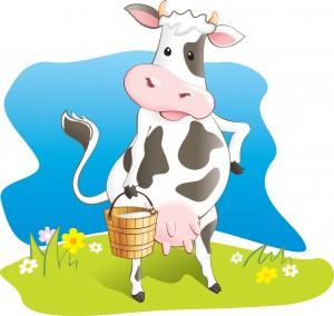 creme de lait de vache